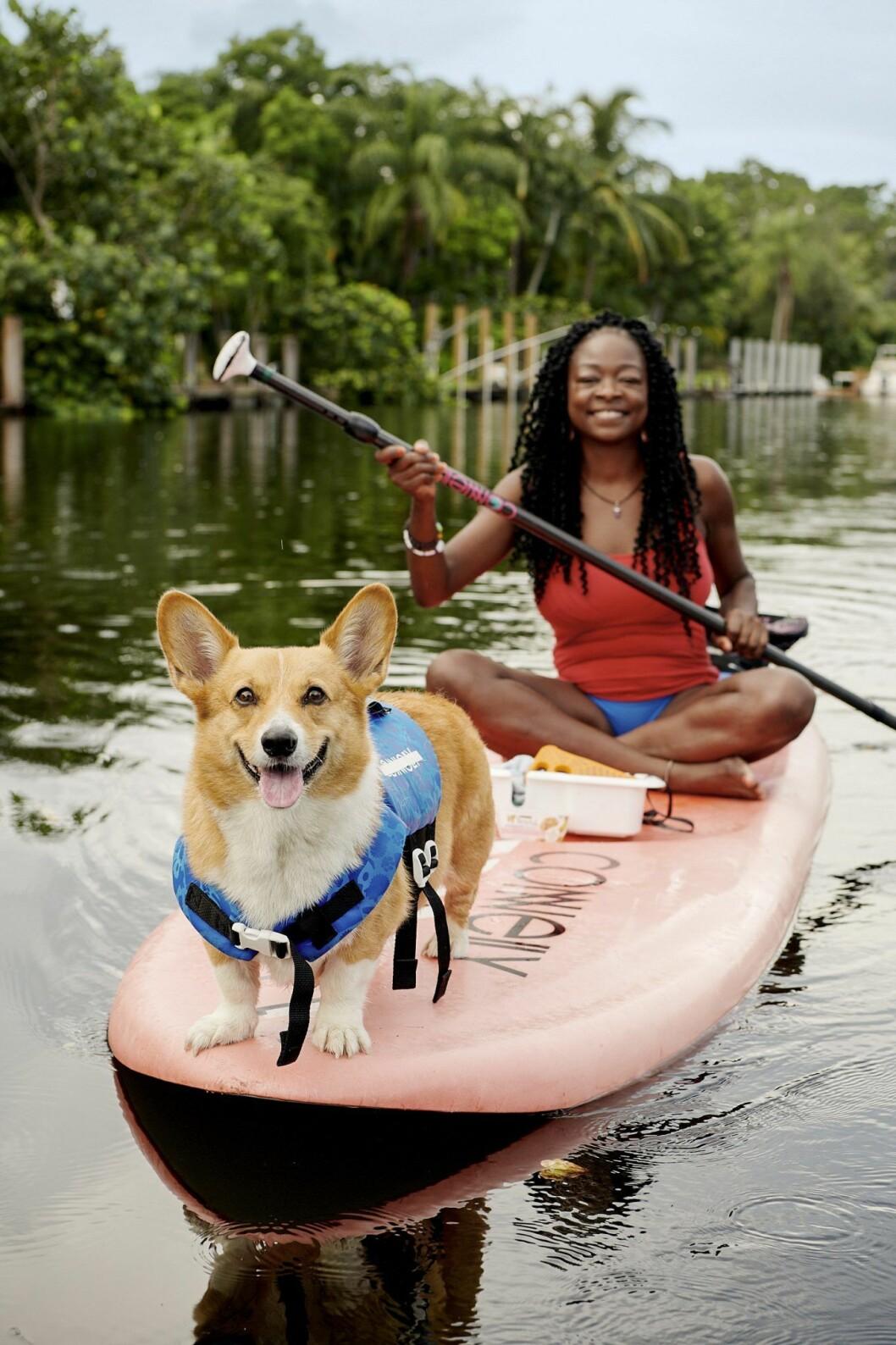 Sup-paddla med en corgi via Airbnb:s nya djurupplevelser