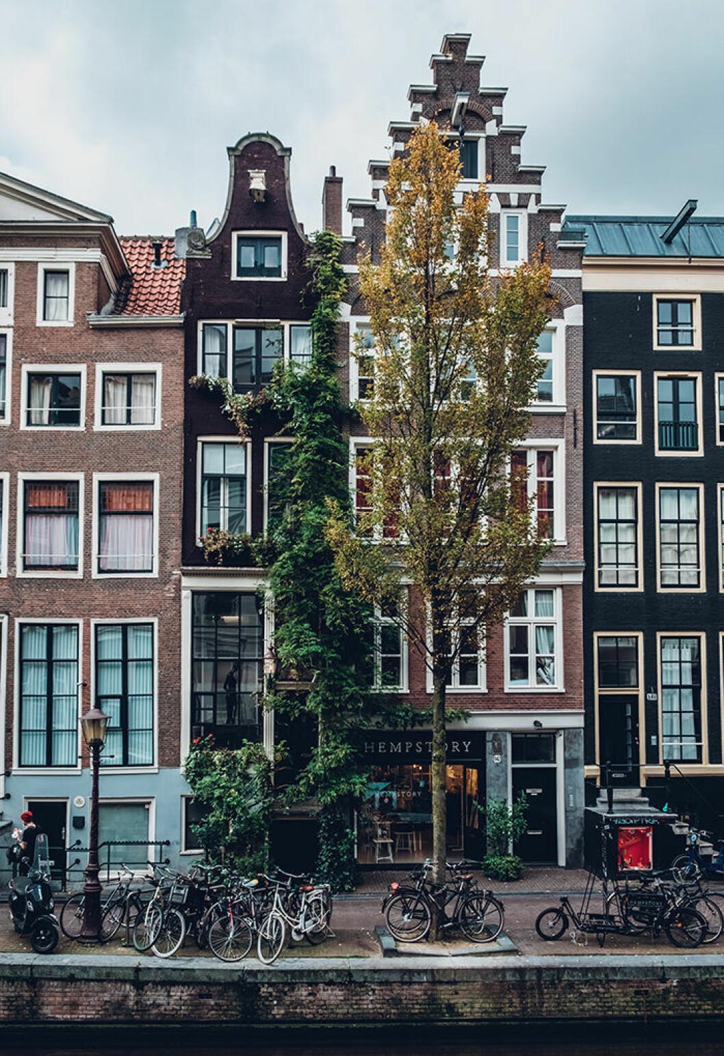 Åk till Amsterdam med tåg