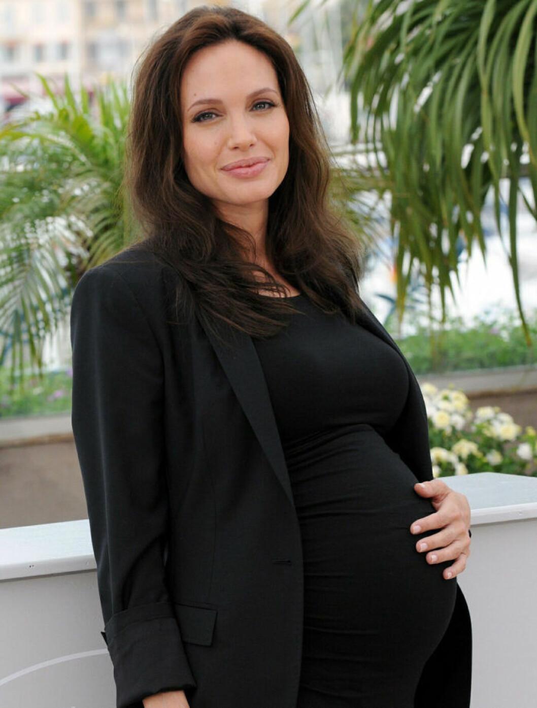 angelina jolie gravid