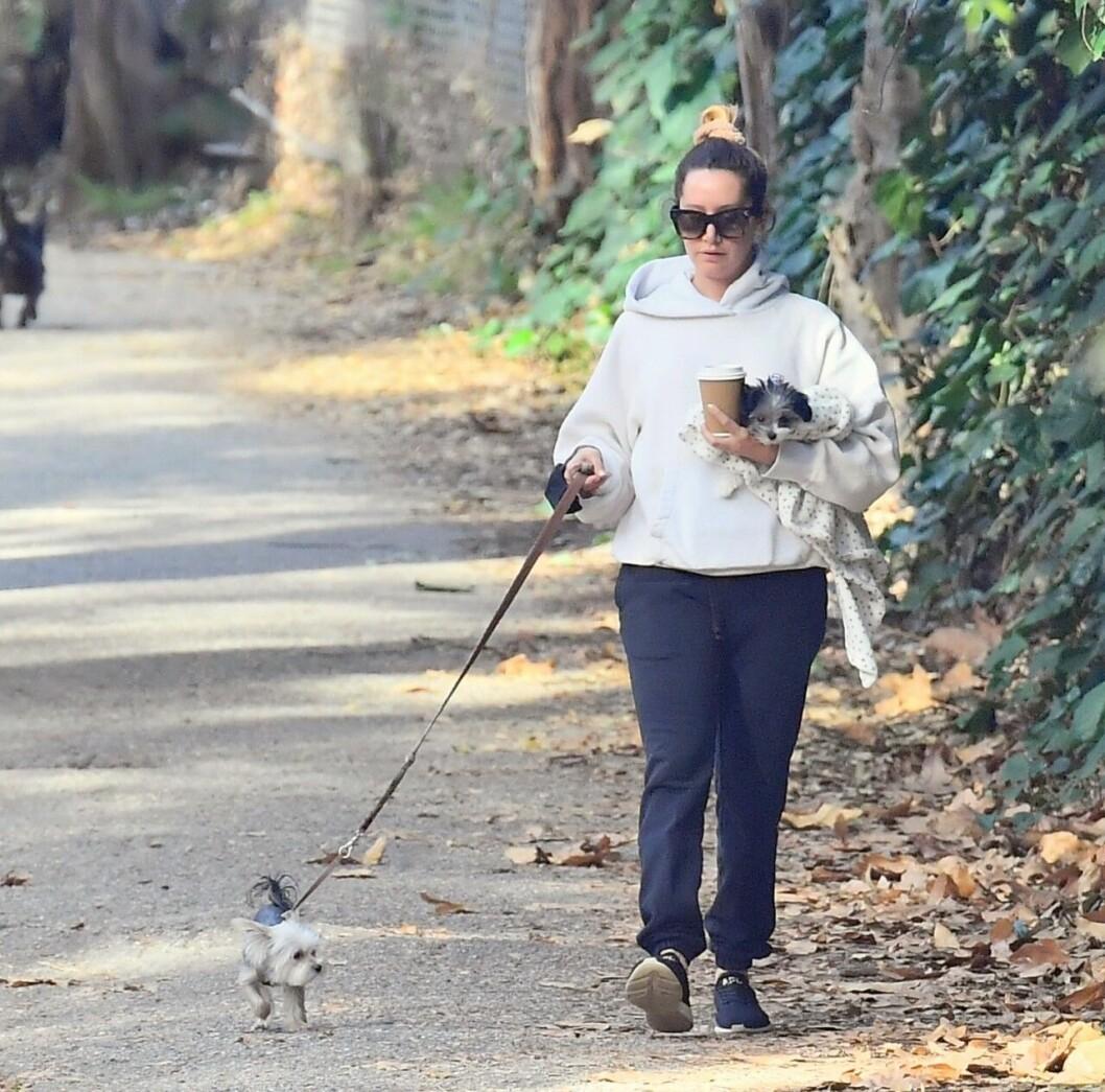 Ashley Tisdale med hundarna Ziggy och Sushi Sue