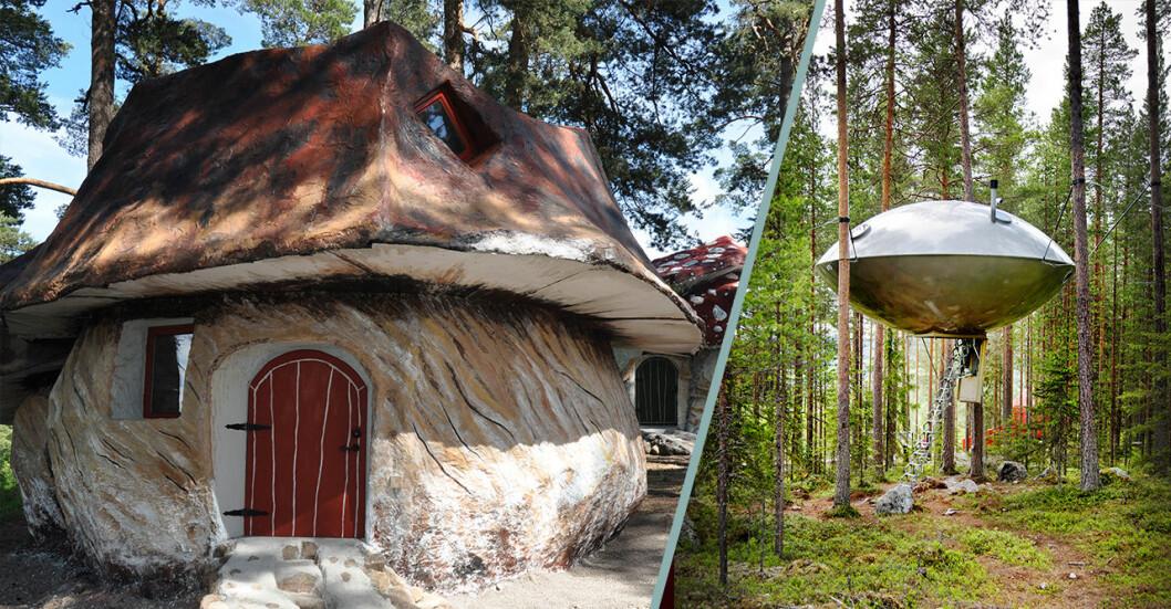 Bo i en svamp eller ett ufo