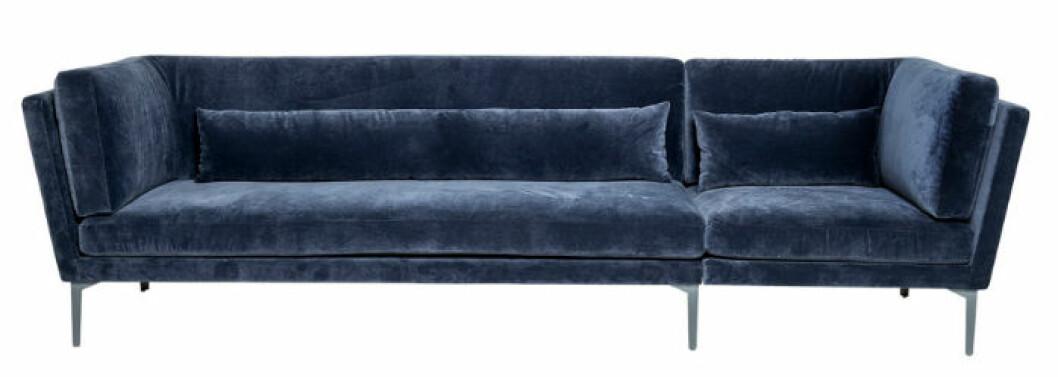 blå soffa sammet