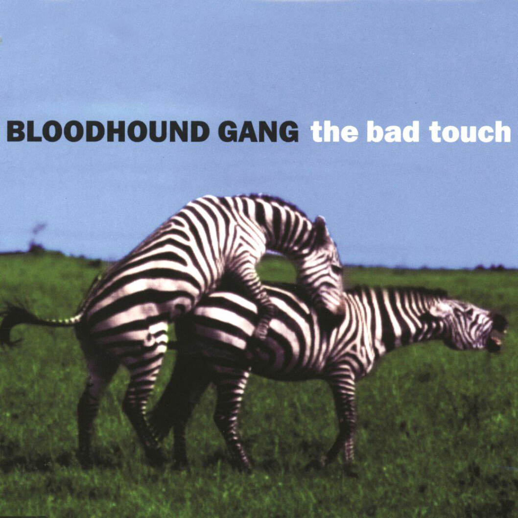 Bloodhound Gangs The Bad Touch.