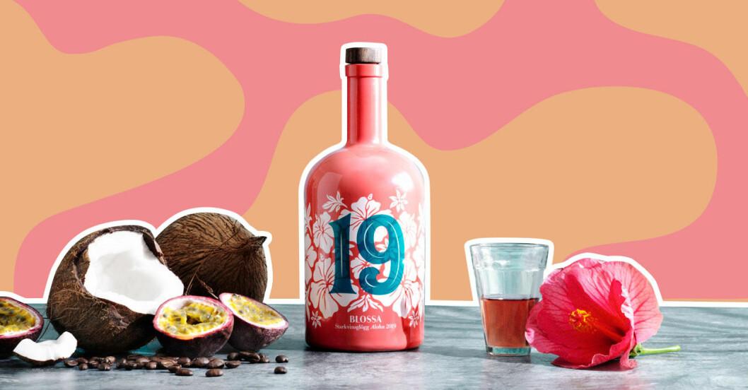 Blossas nya glöggsmak 2019 är kokos, passionsfrukt och hibiskus.