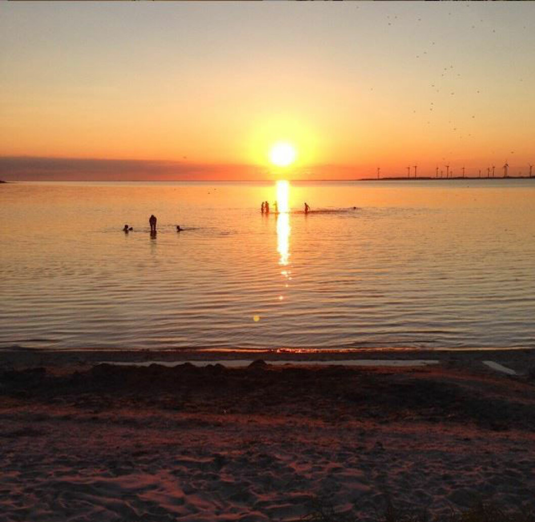 Burgsviks hamn på Gotland.