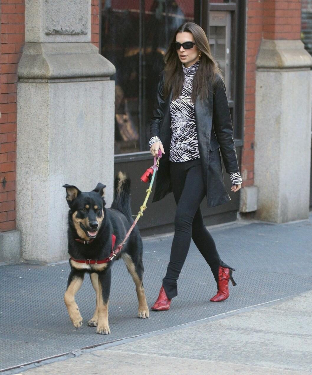 Emily Ratajkowski med sin hund Colombo