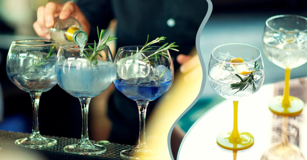 Vinnare av bästa Gin och Tonic-recept.
