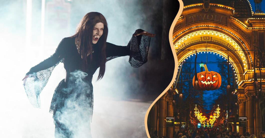 Halloween på Kolmården och Tivoli