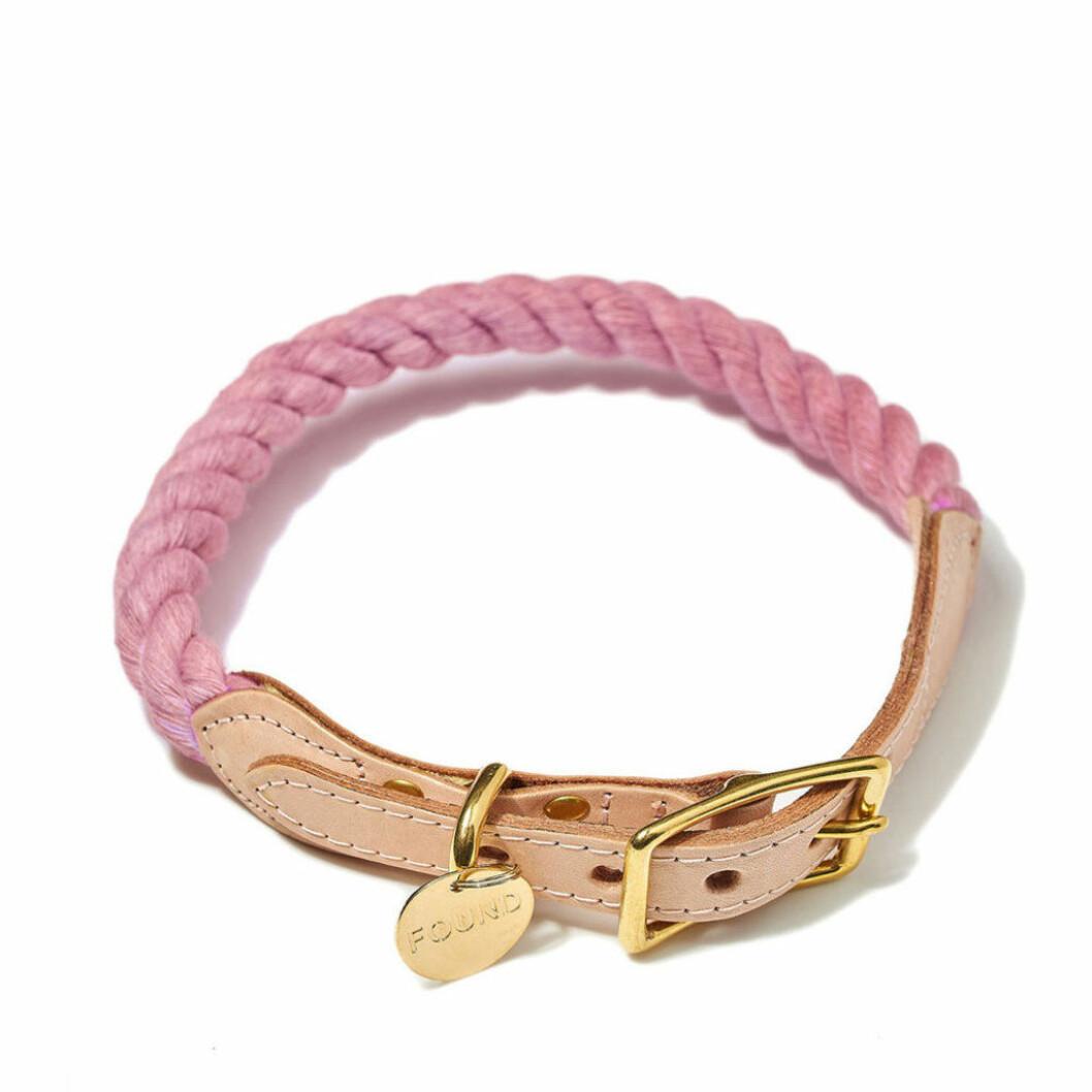 Rosa hundkoppel med gulddetaljer