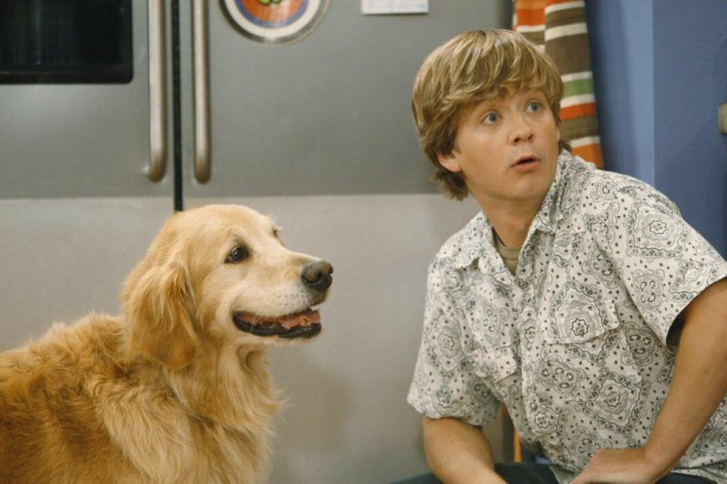 Jason Earles som Hannah Montanas bror