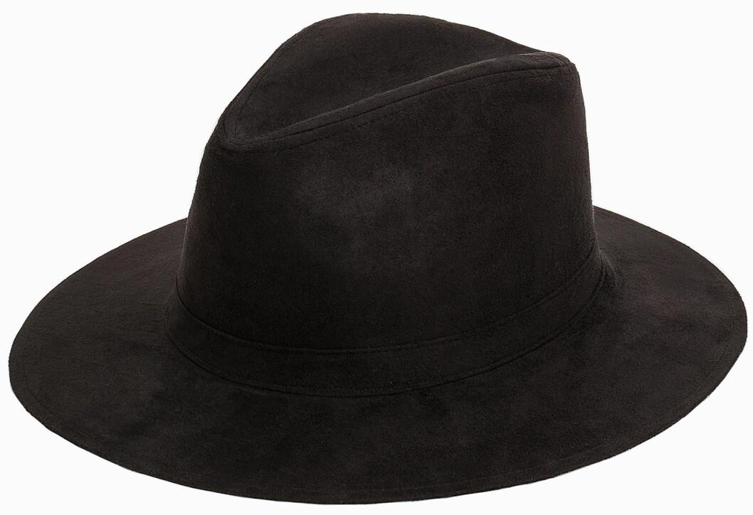 hatt 2016