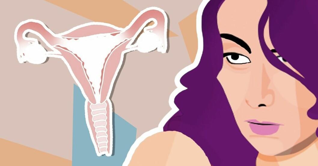 Hur hormoner påverkar kvinnokroppen