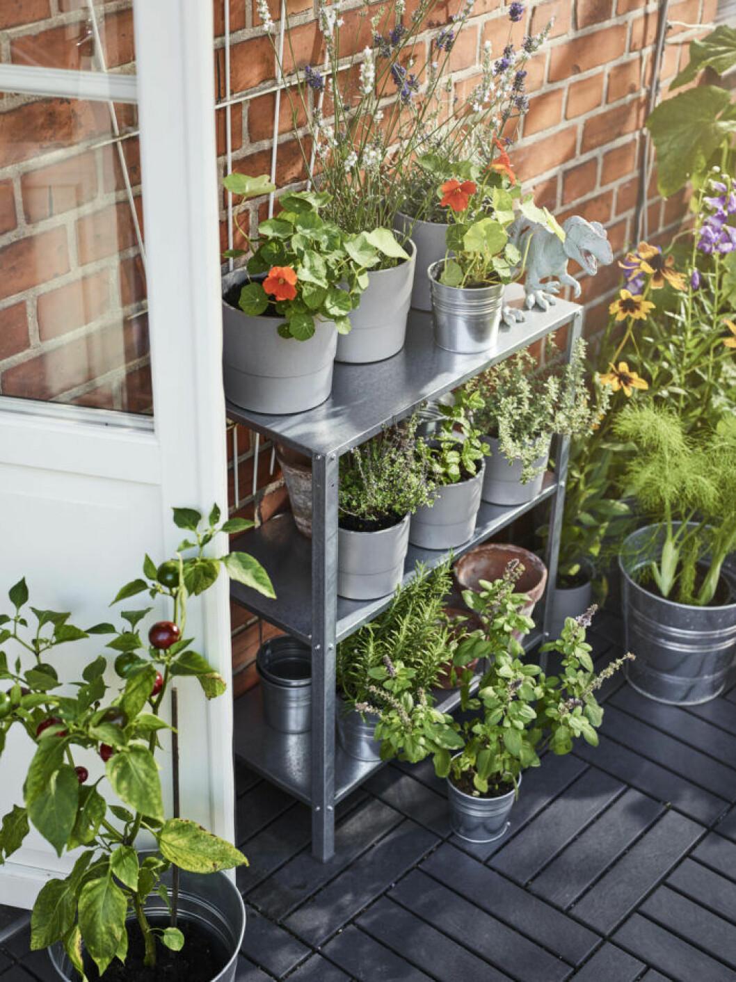 Hylla till balkongen våren 2019 från Ikea