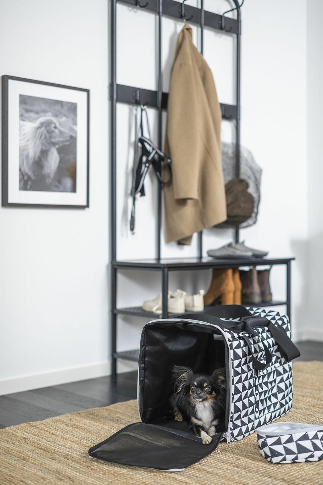 Väska för katten eller den lilla hunden – från Ikeas husdjurskollektion