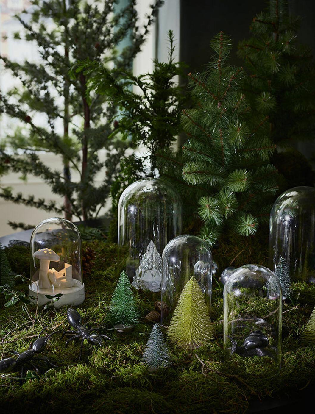 Små granar från Ikea, julen 2018