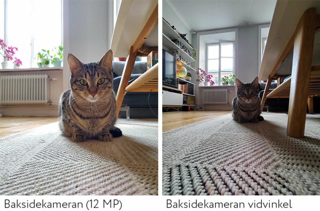 Test av kameran Samsung Galaxy Z Flip