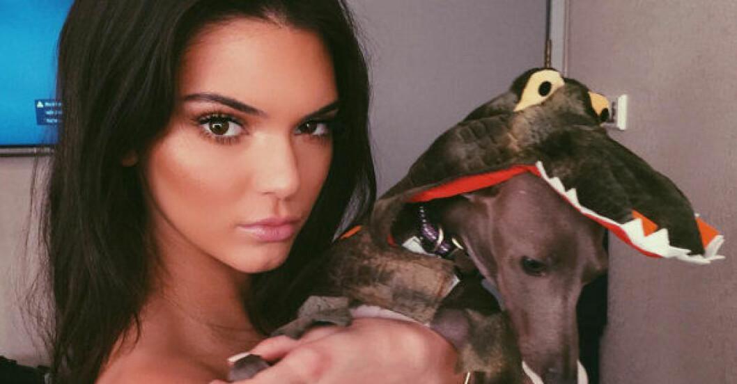 kendall jenner instagram tips