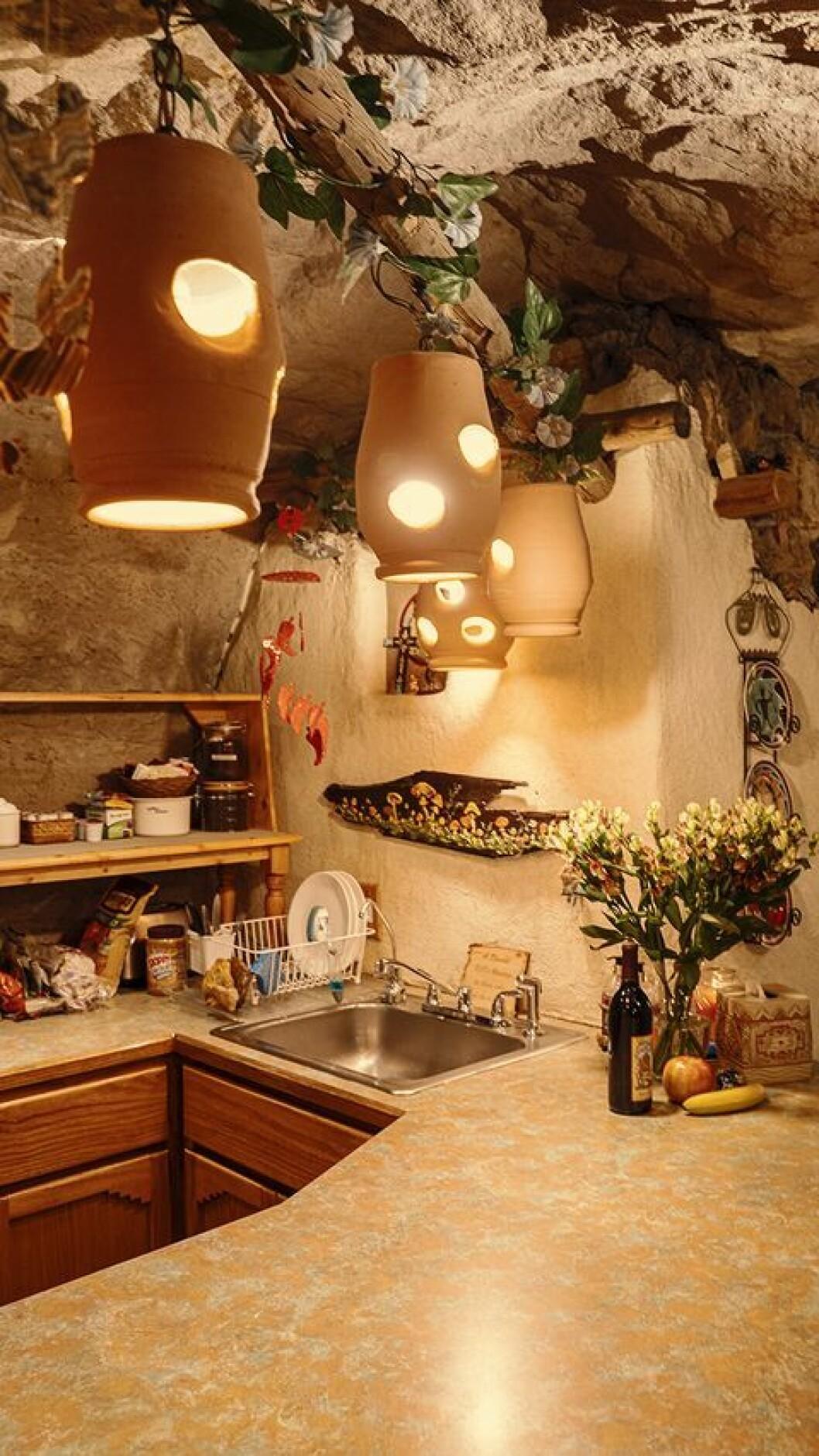 Kök med diskho
