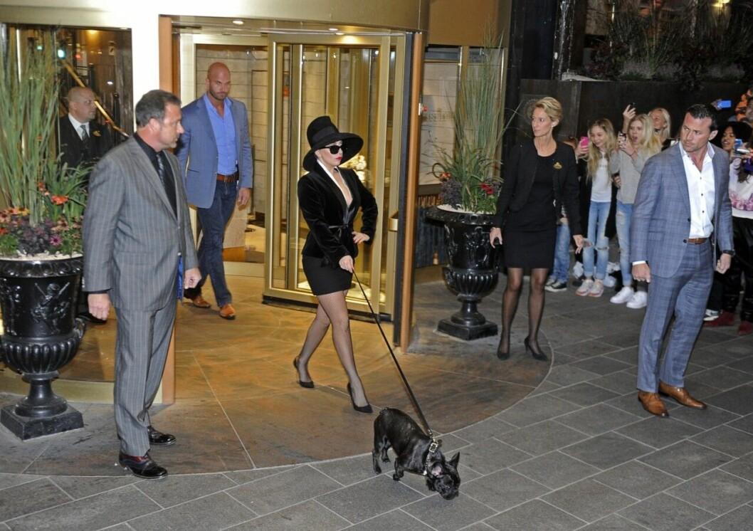 Lady Gaga med sin franska bulldog Asia
