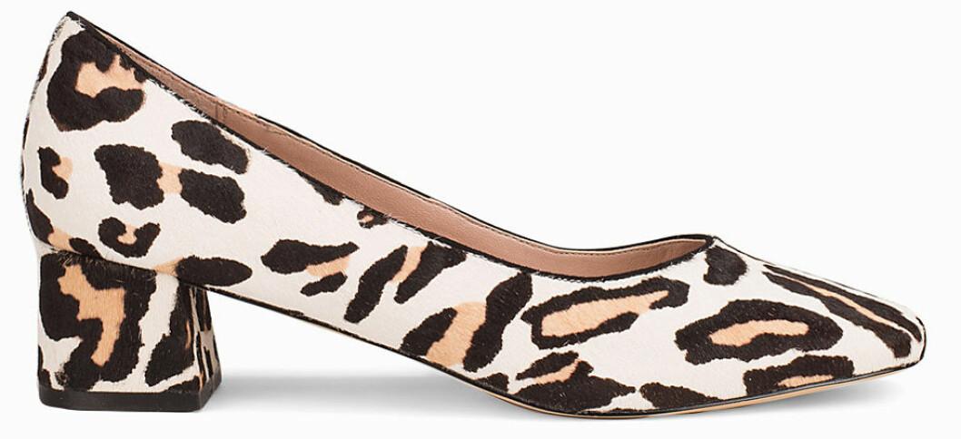 leopard klackar