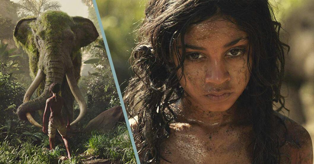 Bilder från filmen Mowgli på Netflix.