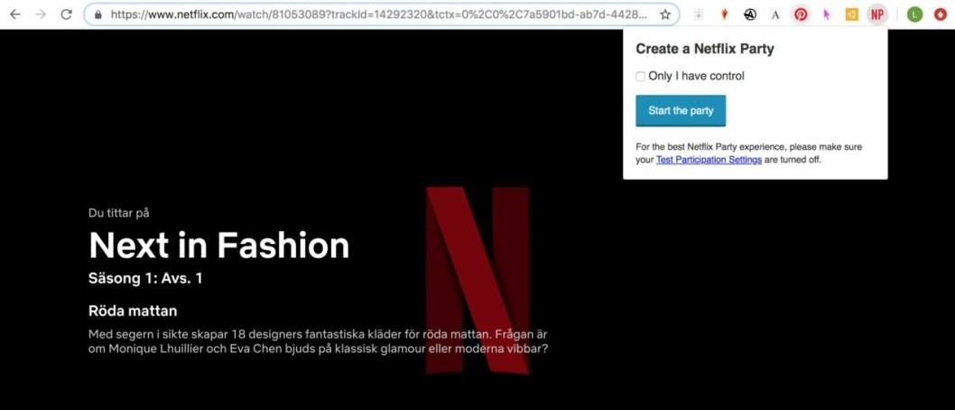 Netflix_party_screen