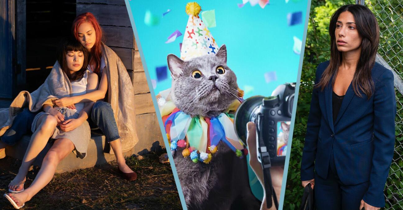 Ride or Die, Evin Ahmad i snabba cash, och en katt i Pet Stars på Netflix i april