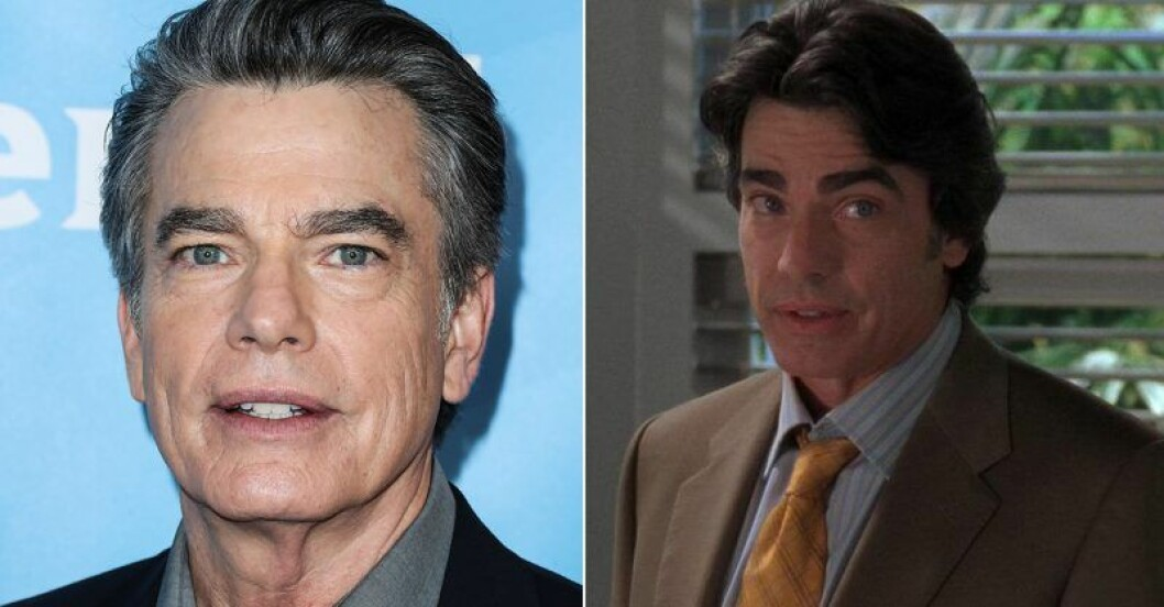 Peter Gallagher, som spelade rollen som Sandy Cohen
