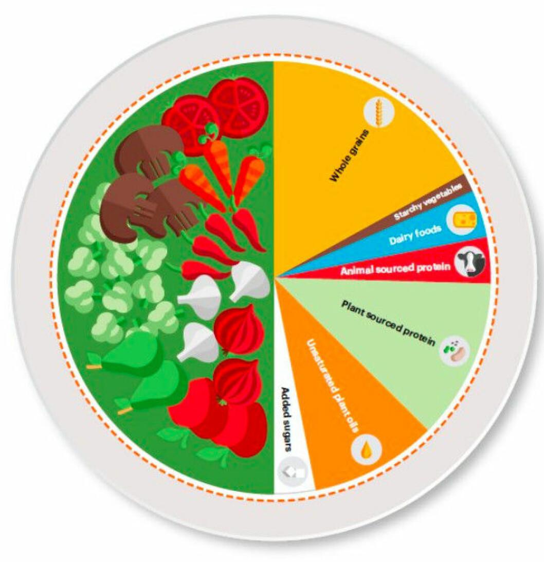 Lancet- EAT-rapportens kostcirkel uppmanar till mer grönsaker och mindre kött.