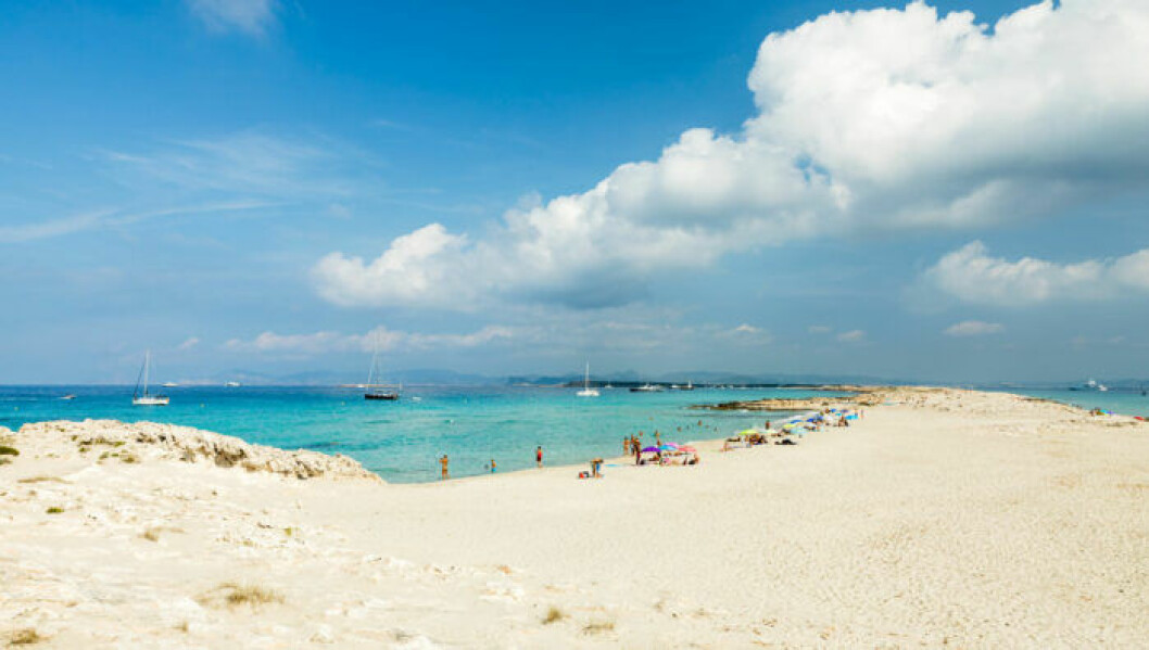 Strandtips: Playa de Ses Illetes, Spanien