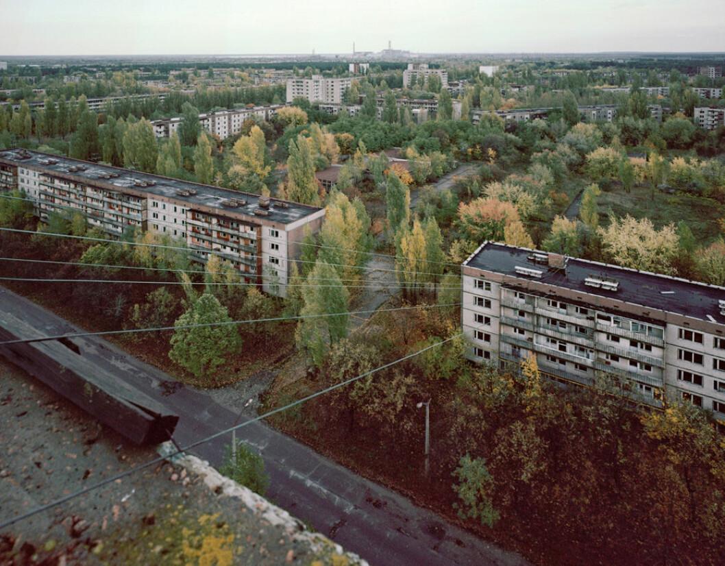 Ett igenvuxet Pripjet vid Tjernobyl.
