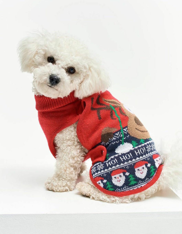 Stickad röd jultröja till hunden inför julen 2019