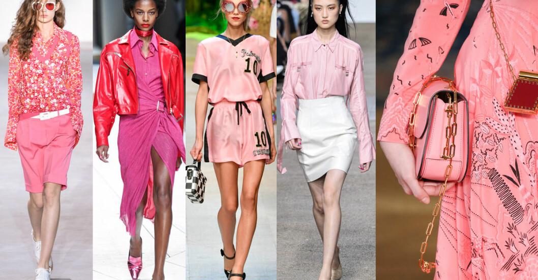 rosa färg mode 2017