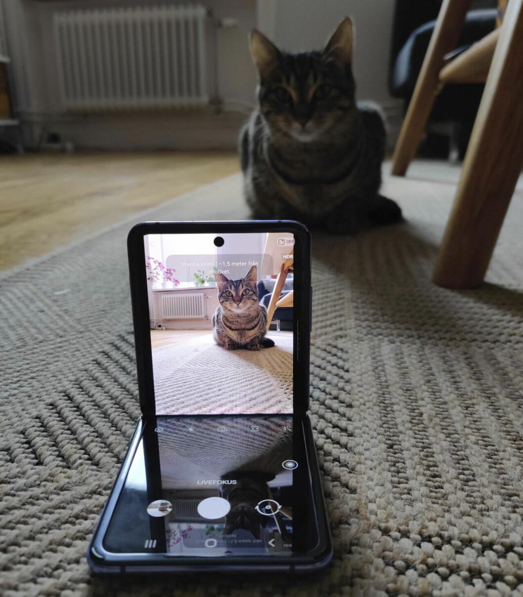 Samsung Galaxy Z Flip – flex