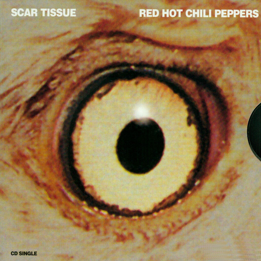 Scar Tissue med Red Hot Chili Peppers, singeln.