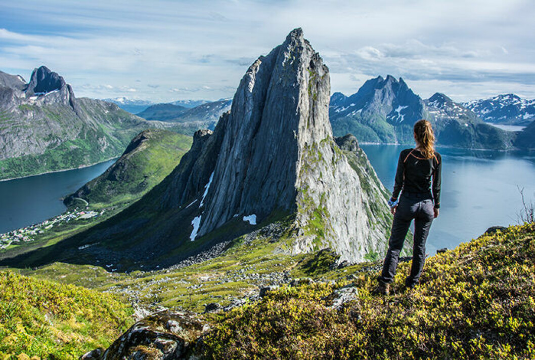 Ön Senja i Norge är väl värd ett besök
