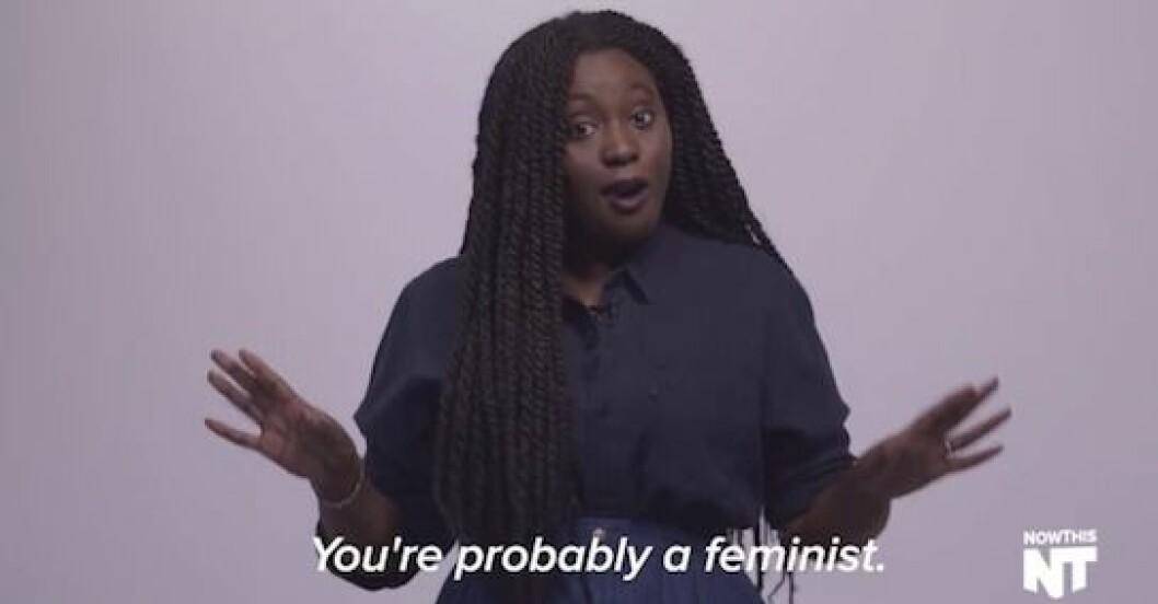 feminism förklaring
