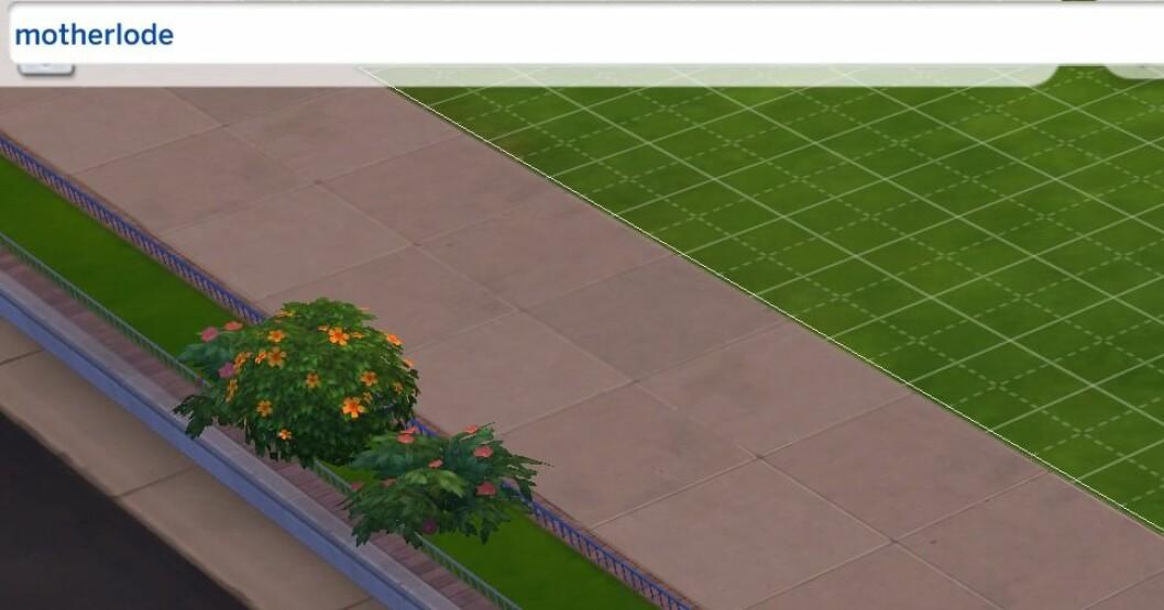 Motherlode Sims 4