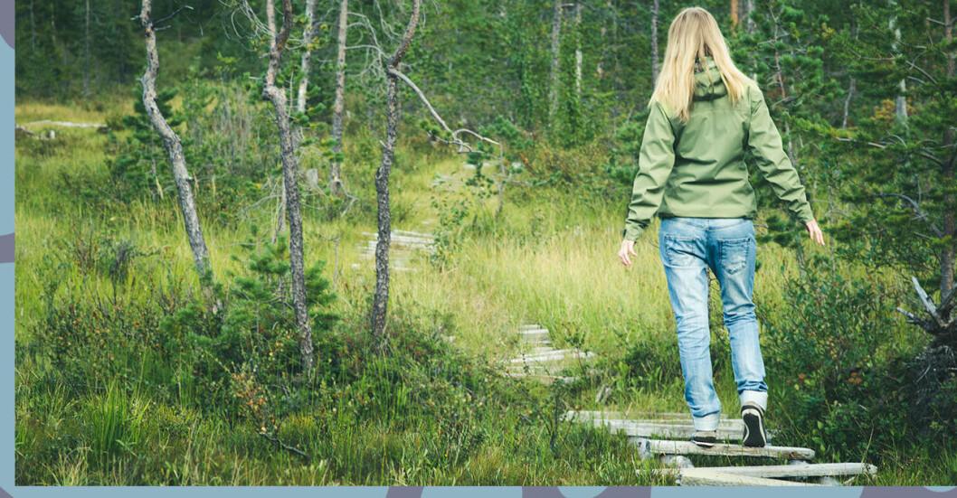 Kvinna i en skog som terapi