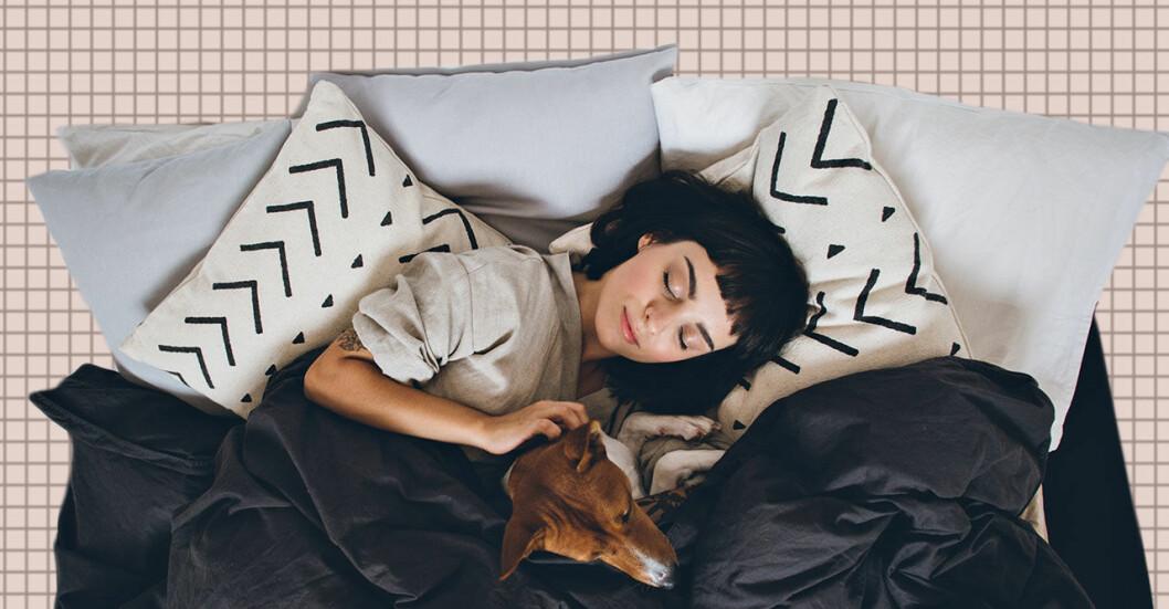 Kvinna snoozar i sängen med hund