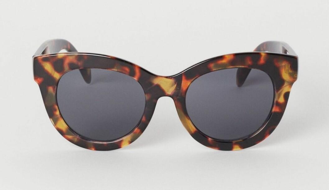 Stora melerade solglasögon till budgetpris