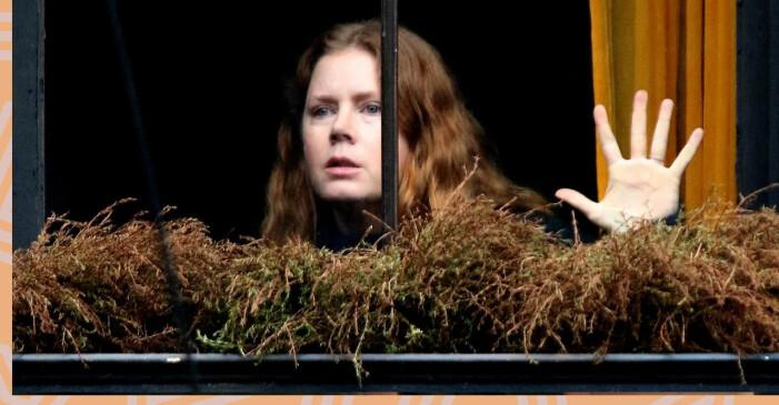 The woman in the window finns som film på Netflix.