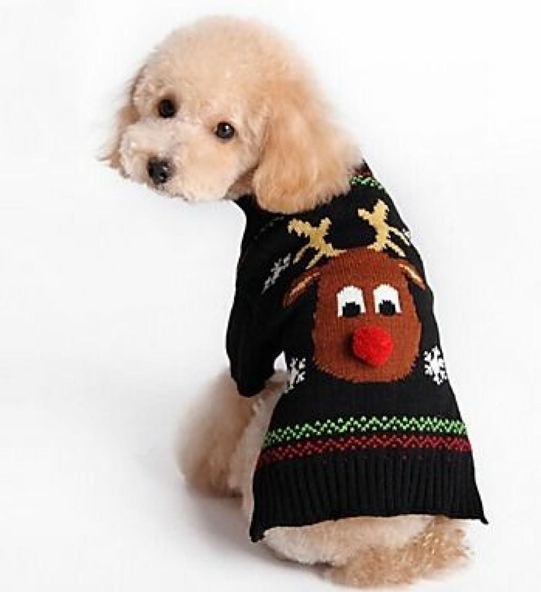 Svart jultröja för hunden till julen 2019