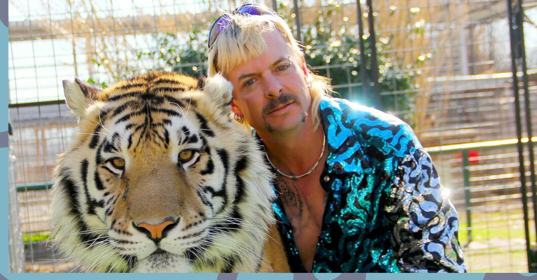 Det kommer ett nytt avsnitt av Tiger King