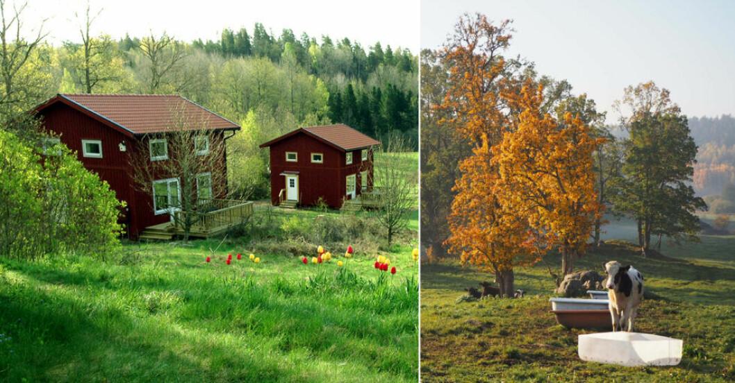 Pittoresk stuga i Valdemarsvik