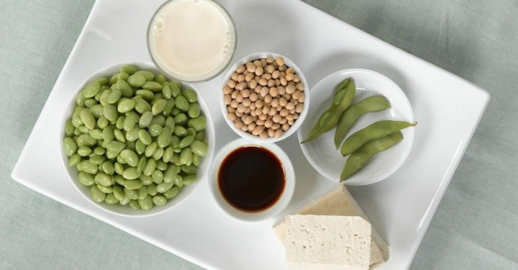 vegetarisk mat med protein