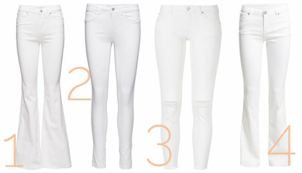 vita jeans 2016