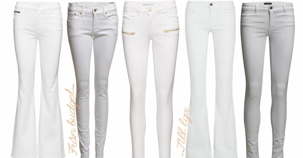 vita jeans vårens trender 2016