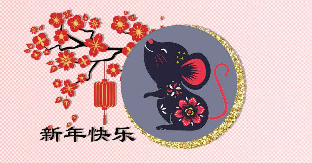 zodiak, råttans år, kinesiskt tecken